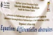 La 8ème école des équations différentielles abstraites
