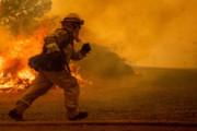 Campagne de sensibilisation contre les incendies et la conservation des forêts et de l'environnement
