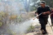 Campagne de sensibilisation contre les incendies et la conservation des forêts et de l'environnement , Sortie vers Tizi Ahmed